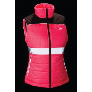 Hi-Viz Womens Down Like Gilet-0