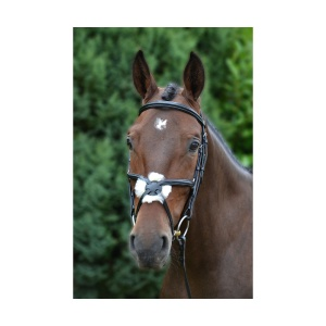 hy equestrian mexican bridle